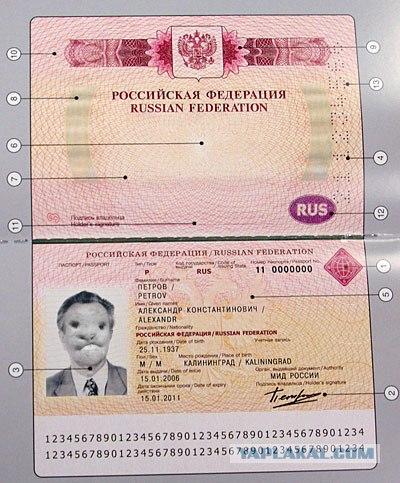 Активные российские держатели банковских карт