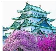 Получение кредитной карты в Японии